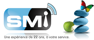 SMI, Service Maintenance Informatique